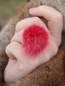 Náhled výrobku: Prsten s kožešinou - norek červeno-růžový