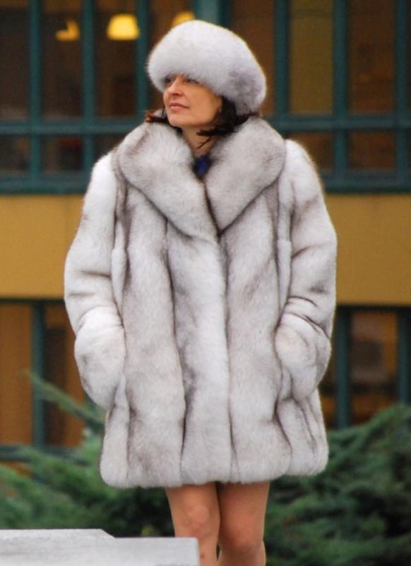 Paleto z polární lišky